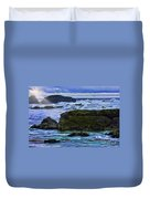 Ano Nuevo Seagull Duvet Cover by Blake Richards
