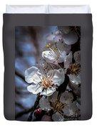 Apple Blossoms Duvet Cover by Robert Bales