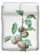 Apples Duvet Cover by Pierre Joseph Redoute