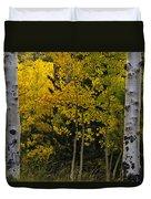 Aspen Light Duvet Cover by Dave Dilli