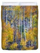 Aspen Tree Magic Cottonwood Pass Duvet Cover by James BO  Insogna