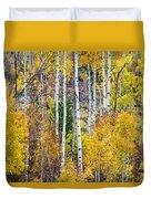 Aspen Tree Magic Duvet Cover by James BO  Insogna