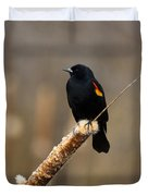 At Rest Duvet Cover by Mike  Dawson