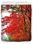 Autumn Along a Country Road Duvet Cover by Terri Gostola
