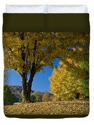 Autumn Colors Duvet Cover by Brian Jannsen