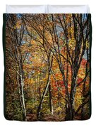 Autumn Trees Duvet Cover by Elena Elisseeva