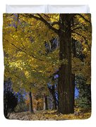 Autumn Wall - Fm000082 Duvet Cover by Daniel Dempster