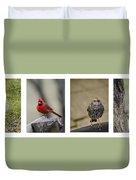 Backyard Bird Series Duvet Cover by Heather Applegate