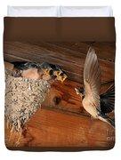Barn Swallow Nest Duvet Cover by Scott Linstead