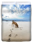 Beach Dog Duvet Cover by Eldad Carin