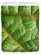 Big Green Leaf 5D22460 Duvet Cover by Wingsdomain Art and Photography
