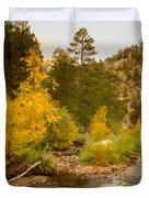 Big Thompson River 10 Duvet Cover by Jon Burch Photography