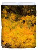 Big Thompson River - 9 Duvet Cover by Jon Burch Photography