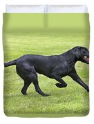 Black Labrador Playing Duvet Cover by Johan De Meester