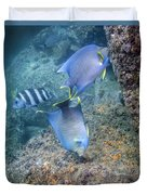 Blue Angelfish Feeding On Coral Duvet Cover by Michael Wood