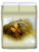 Born To Fly Duvet Cover by Robyn King
