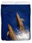 Bottlenose Dolphins Tursiops Truncatus Duvet Cover by Anonymous