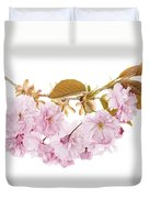 Branch With Cherry Blossoms Duvet Cover by Elena Elisseeva