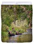 Bull Moose Summertime Spa Duvet Cover by Timothy Flanigan