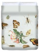 Butterflies Moths And Other Insects With A Sprig Of Apple Blossom Duvet Cover by Jan Van Kessel