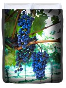 Cabernet Sauvignon Grapes Duvet Cover by Robert Bales