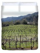 California Vineyards In Late Winter Just Before The Bloom 5D22088 Duvet Cover by Wingsdomain Art and Photography