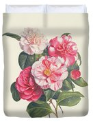 Camelias Duvet Cover by Augusta Innes Withers