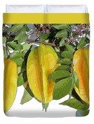 Carambolas Starfruit Three Up Duvet Cover by Olivia Novak