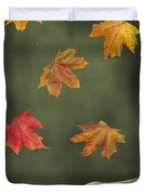 Catching Leaves Duvet Cover by Amanda And Christopher Elwell