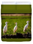 Cattle Egrets Duvet Cover by Robert Bales