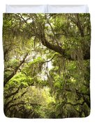Charleston Avenue Of Oaks Duvet Cover by Stephanie McDowell