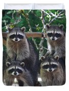 Cheerleading Raccoons Duvet Cover by Kym Backland