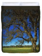 Chickamauga Battlefield Duvet Cover by Mountain Dreams