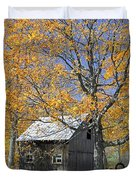 Childhood Memories Tire Swing  Duvet Cover by Timothy Flanigan