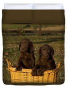 Chocolate Labrador Retriever Pups Duvet Cover by Linda Freshwaters Arndt
