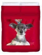Christmas Dog Duvet Cover by Edward Fielding
