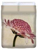 Chrysanthemum Domino Pink Duvet Cover by John Edwards