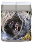 Closeup Of Lapland Longspur Chicks In Duvet Cover by Scott Dickerson