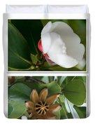 Clusia rosea - Clusia major - Autograph Tree - Maui Hawaii Duvet Cover by Sharon Mau