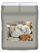 Coastal Shell Fossil Art Prints Rocks Beach Duvet Cover by Baslee Troutman