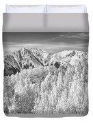 Colorado Rocky Mountain Autumn Beauty Bw Duvet Cover by James BO  Insogna
