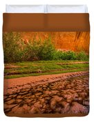 Colorful Streambed - Coyote Gulch - Utah Duvet Cover by Gary Whitton