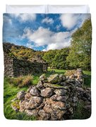 Cottage Ruin Duvet Cover by Adrian Evans