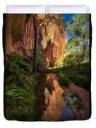 Coyote Gulch Canyon Reflection - Utah Duvet Cover by Gary Whitton