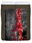 Creeper On Pole Desaturated Duvet Cover by Teresa Mucha