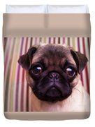 Cute Pug Puppy Duvet Cover by Edward Fielding