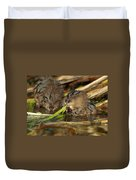 Cutest Water Rats Duvet Cover by James Peterson