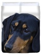 Dachshund Duvet Cover by Linsey Williams