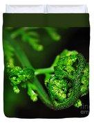Delicate Fern Unfolding Duvet Cover by Kaye Menner