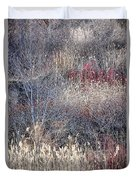 Dry Grasses And Bare Trees Duvet Cover by Elena Elisseeva
